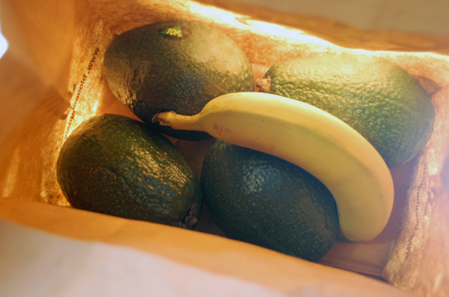 Post image for how to ripen avocados quickly